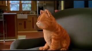 Garfield ve Köbok Horon Oynay - Karadeniz Dublaj