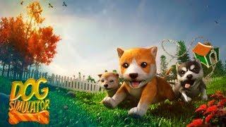 Симулятор Собаки #1 Знакомство и первые Пакости Детское Видео Игровой Мультик Let's Play