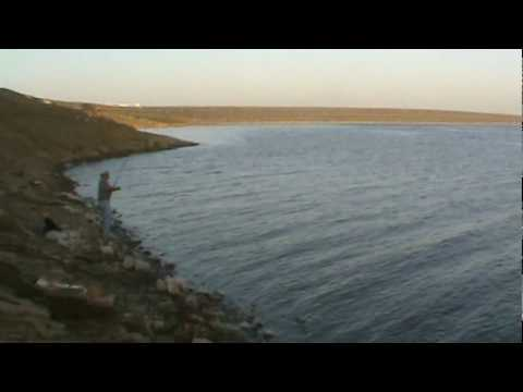 Another day striper fishing san luis reservoir with my for San luis reservoir fishing