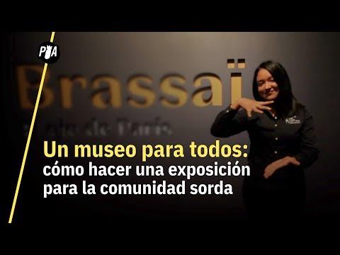 Museo del Palacio de Bellas Artes y Alas de las Artes trabajan para hacer el museo para todos