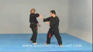 Free style Kenpo Karate(In this DVD the Great Master Tatum, attended by the Master Luelmo (7º degree) and Camacho (6º degree), representatives of the LTKKA for Spain, Portugal and ..., 2008-02-29T10:04:39.000Z)
