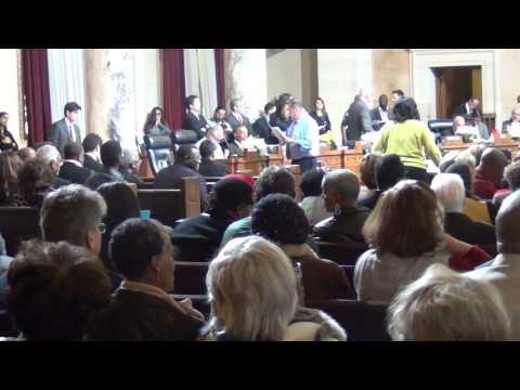Los Angeles City Council Jan Perry Bernard C Parks remap public meeting