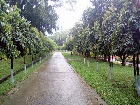 Marine Academy | Chittagong | Silence