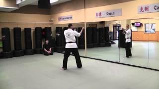 Kenpo Six - technique 2