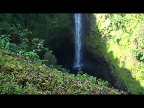 Akaka Falls - BIg Island Hawaii