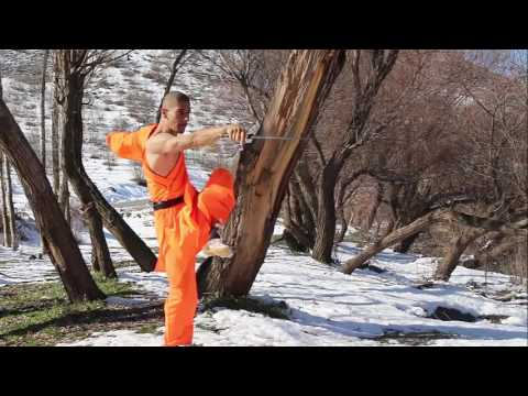 shaolin  School Shifu Ramyar weapon