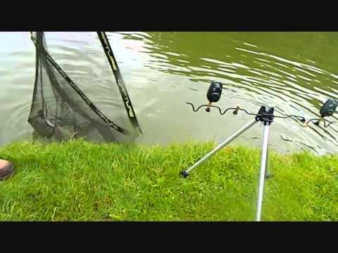 Fischen in stögersbach