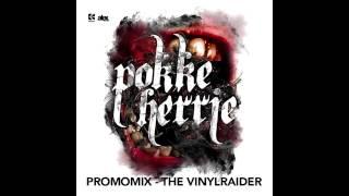 The Vinylraider - Pokke Herrie [Promo]