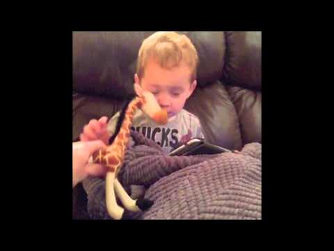 Download Youtube: Vines With Gavin
