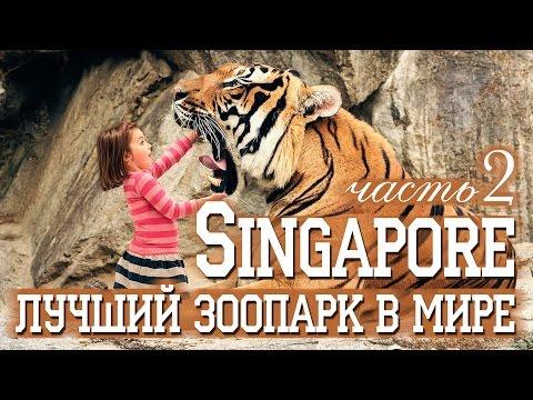 СИНГАПУР | ЛУЧШИЙ