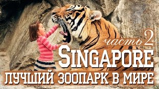 СИНГАПУР | ЛУЧШИЙ ЗООПАРК В МИРЕ | SINGAPORE ZOO