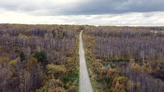 Осенние виды Новосибирской области