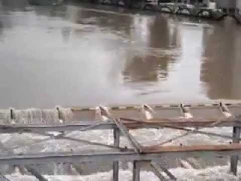 Havey rain water level crosses over to bridge Baroda