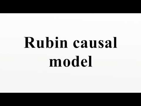 Rubin causal model