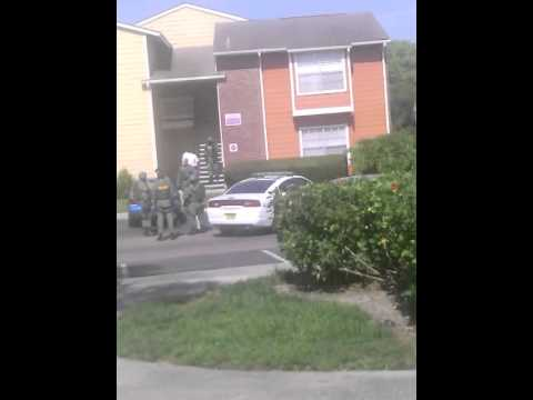 newport apt stand off tampa fl youtube