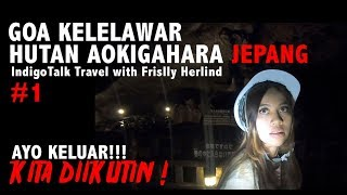 Goa Kelelawar Hutan Aokigahara Jepang - IndigoTalk Travel with Frislly Herlind Billy Christian