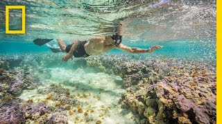 Snorkeling With President Obama: How Our Photographer Got the Shot (Exclusive) | National Geographic