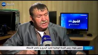 الجزائر تستورد أكثر من 400 ألف طن من الأسماك المجمدة سنويا