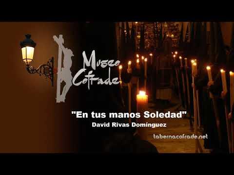 En tus manos Soledad | David Rivas Domínguez