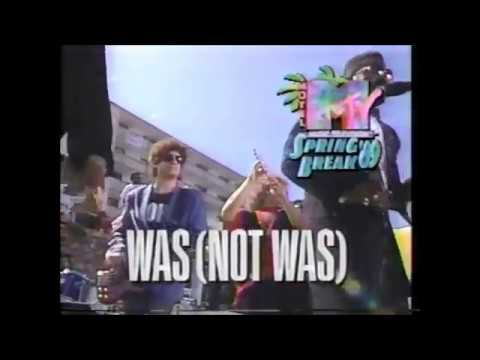 WAS (NOT WAS) Live from Daytona Beach 1989, Walk The Dinosaur