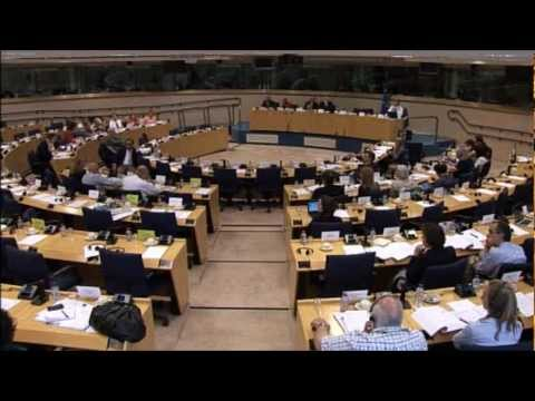 EU Subsidiarity: Decision making at supra-national levels - Stuart Agnew