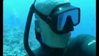 Download Video Freediving in Palau, Mikronesia MP3 3GP MP4