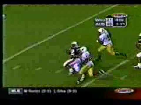 Auburn Tigers vs Wyoming Rudi Johnson TD Run