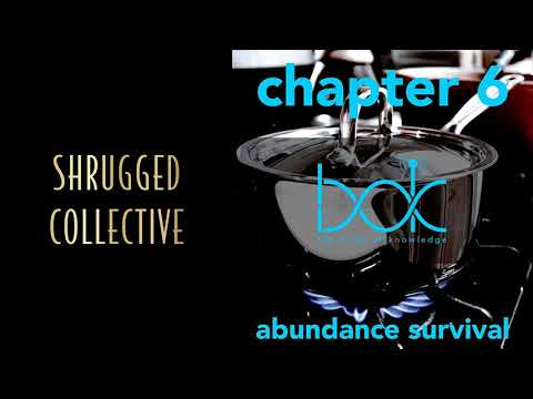 Body of Knowledge — Chapter 6 — Abundance Survival
