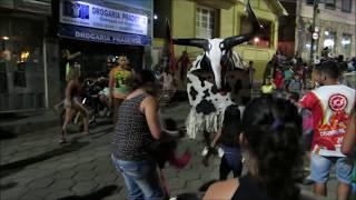 Boi Mofado, Prados/MG, grupo: Boi Chitão, 2018