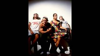 Red Hot Chili Peppers - What Is Soul?/No Head No Backstage Pass live in Burlington 1991