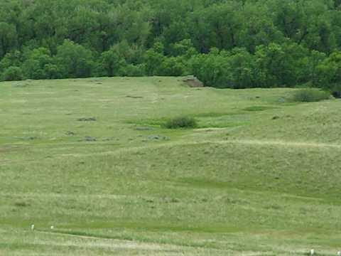 From Little BigHorn - Custer's Battlefield