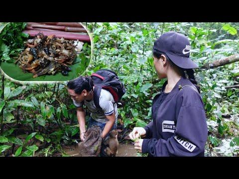 หาวัตถุดิบจากธรรมชาติมาทำอาหารกินในป่า.![ອາຄານ້ອຍ]