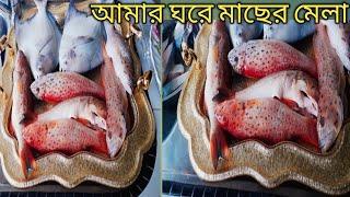 সিংগাপুর শুক্রবারের সকালের বাজার দেখতে কেমন/ Bangladeshi Blogger Nerisha