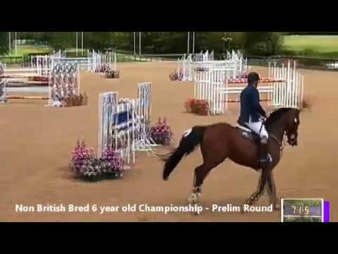 British Young Horse Showjumping Championships Non-British 6YO Prelim - Friday 18th August 2017
