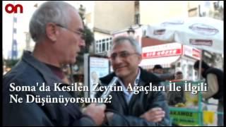 Bandırma'da Vatandaşlara Soma'da Kesilen Zeytin Ağaçlarını Sorduk