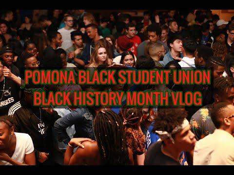 Pomona College BHM Vlog 2019✊�🌟