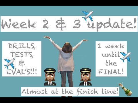 Week 2 & 3 Training Update!!! | Welcome to Traveling With Tee! 🌎 | Flight Attendant Life ✈️