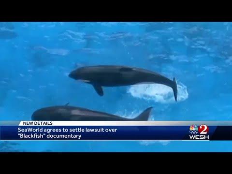 SeaWorld Settlement Over Blackfish