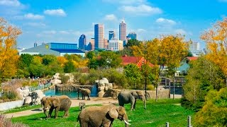 Top Tourist Attractions in Indianapolis (Indiana) - Travel Guide