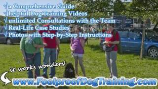 Canine Training Schools North Carolina - Best Dog Training