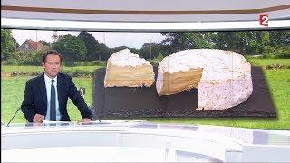 2017 06 09 France 2  - Reportage sur le Camembert de Normandie