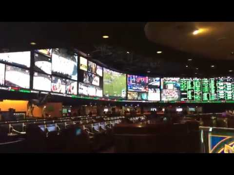 Sports Book at the Westgate 2016