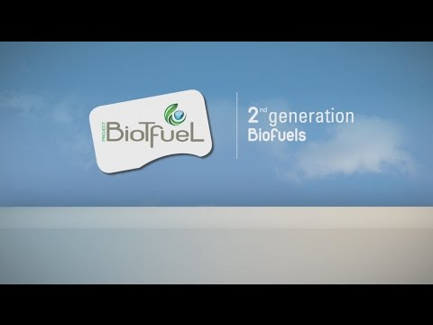 The BioTfuel project: Second-generation biodiesel and biojet fuel