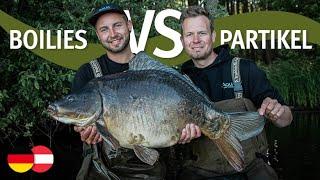 Boilies VS Partikel - mit Klaus Wegmann & Kai Köttelwesch | Karpfenangeln | Mais | Hanf | Tigernüsse