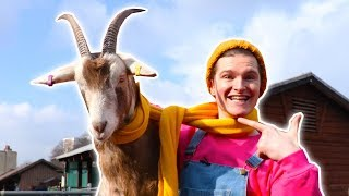 CODY MEETS THE PIGS, GOATS & DUCKS AT THE FARM - Learn Animals For Kids | Cody - WildBrain