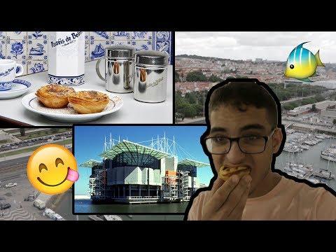 Portugal Pt.2! (visiting the Pasteis de Belem bakery and the world famous Lisbon aquarium)
