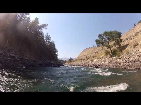 Fly Fishing on the Yellowstone River, East Gallatin, and Story's Lake:  August 15-18, 2012