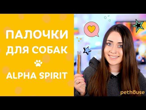 ПРОБУЮ лакомства-палочки ДЛЯ СОБАК Alpha Spirit | Обзор зоотоваров от Pethouse.ua