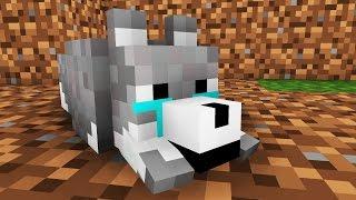 Wolf Life: Alone -- Minecraft Animation