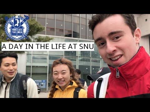 Seoul National University | Day in the Life at SNU | 서울대 대학생의 일상